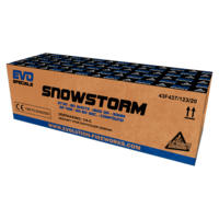 2730 Snowstorm