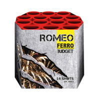 4502 FERRO Romeo